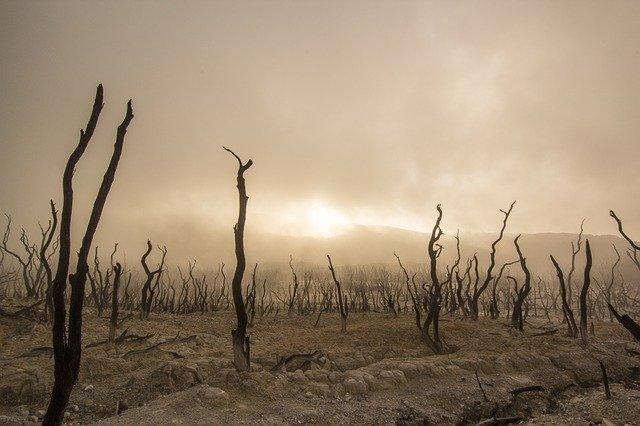 spustošená krajina.jpg